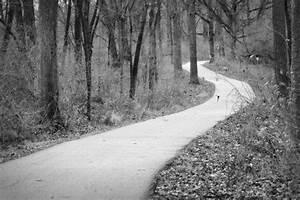 Black White Photography :XCOMBear - download photos, textures