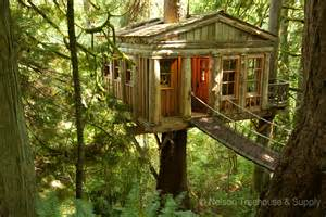 Pete Nelson Treehouse Masters Houses