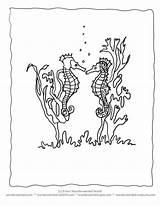 Seaweed Coloring Seahorse Ocean Realistic Sea Clipart Sheets Seahorses Printable Quotes Activities Animals Cartoon Animal Horse Echo Wonderweirded Wildlife Preschool sketch template