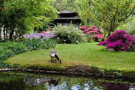 Japanischer Garten Leverkusen by Fotos Japanischer Garten In Leverkusen