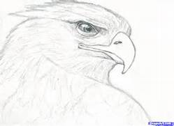 Eagle Drawing How to d...