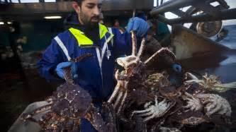 deadliest catch seabrooke sinks apexwallpapers