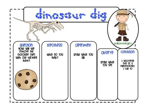 9 best images about fossils on chip cookies