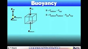 Where The Buoyant Force  Buoyancy  Comes From