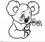 Koala Cartoon Drawing Coloring Pages Printable Animals Adults sketch template
