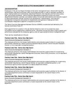 sle executive assistant description 8 exles