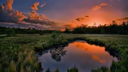 Pond Water Field Middle Desktop Background 4k