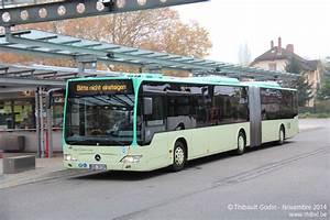 Berlin Ulm Bus : baden baden bus ~ Markanthonyermac.com Haus und Dekorationen