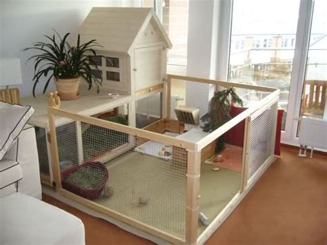 indoor rabbit housing bunny approved house rabbit toys