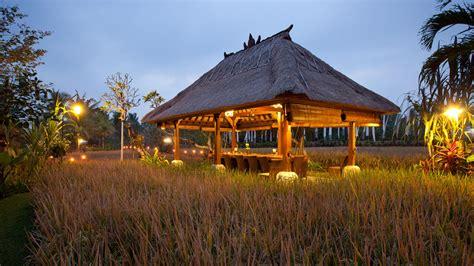 Bebek Tepi Sawah Restaurant and Villas - A Restful Retreat ...