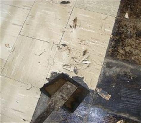 many still ignore dangers of asbestos