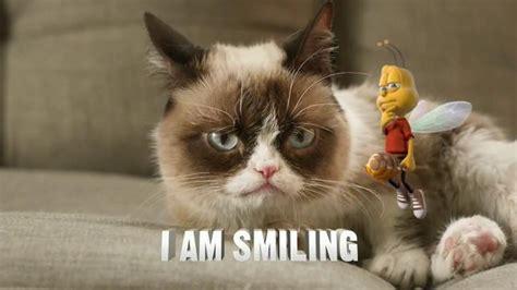 Honey Nut Cheerios Tv Commercial, 'buzz Meets Grumpy Cat