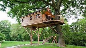 TOP 10 Coolest Tree Houses Design ever | Modern Tiny Tree ...