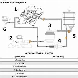 Modern Vespa   Lx150 Complete Evap System Removal