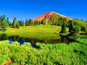Green mountain - Mountains & Nature Background Wallpapers ...