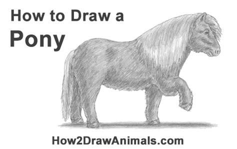 draw  pony
