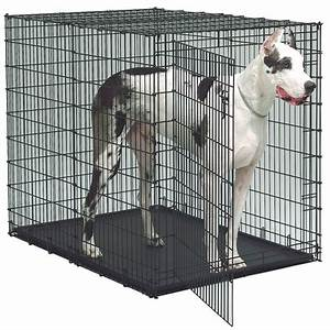 Extra large dog crate 1800petmeds for Extra large dog cage