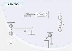 Types Of Scientific Illustration