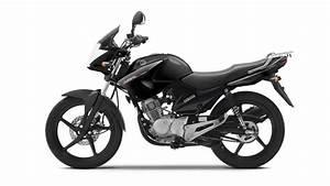 125 Motorrad Yamaha : 2014 yamaha ybr 125 custom moto zombdrive com ~ Kayakingforconservation.com Haus und Dekorationen