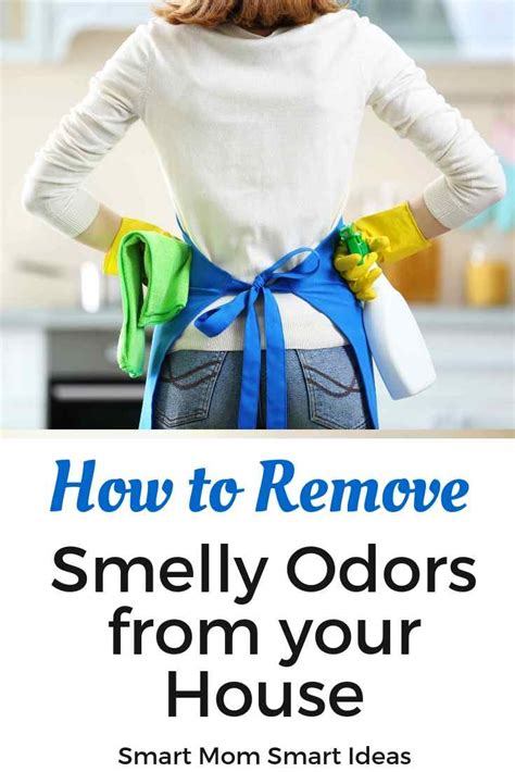 rid   bad odor   house