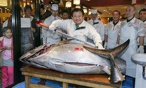 Price of bluefin tuna falls at Tokyo auction | World news ...