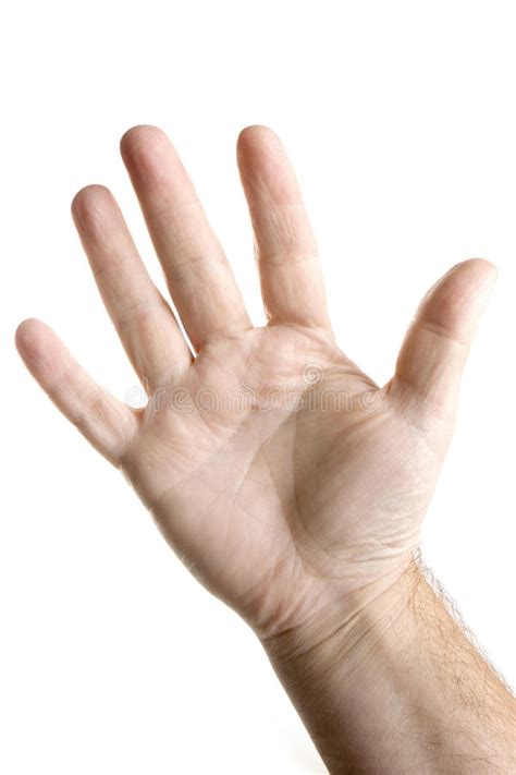 Five Fingers by Five Fingers Palm Of Stock Image Image Of Copyspace