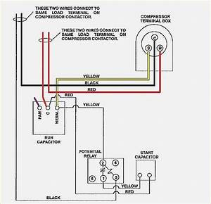 1986 F150 Fuel Pump Wiring Diagram