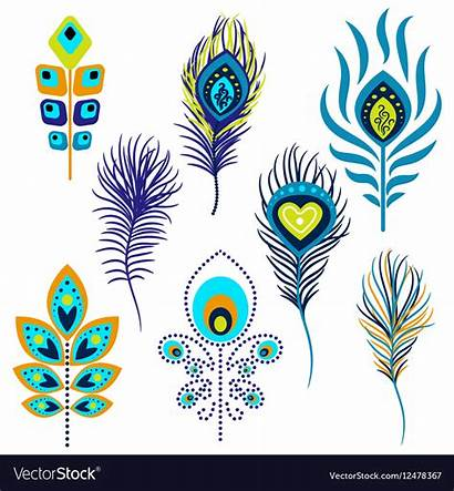 Clipart Peacock Feathers Feather Alamy Clip Clipground