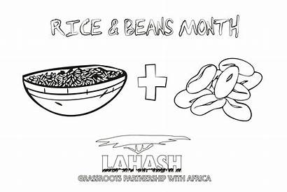Rice Coloring Beans Pages 1502 1923 13kb