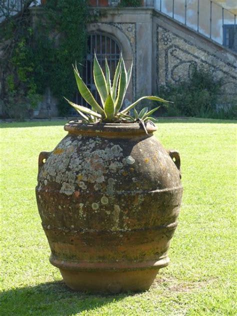 anfore terracotta da giardino anfore da giardino