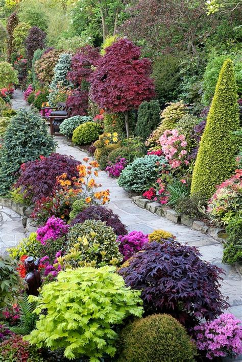beautiful garden trees beautiful combination of shrubs trees flowers a1 pictures