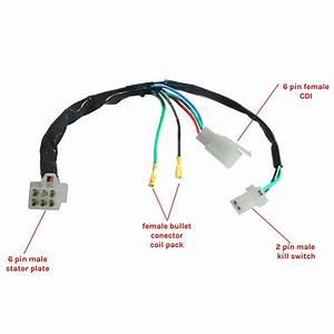 Diagram  Diagram Pit Wiring Bike Zsx201011a Full Version
