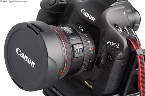 Canon Ef 815mm F4l Usm Fisheye Lens Review