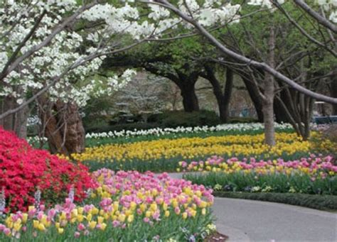 best botanical gardens in the us america s best botanical gardens part 2 the south and