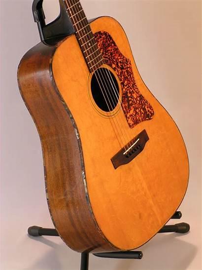 Gibson Deluxe Audiofanzine