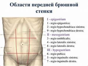 U0422 U043e U043f U043e U0433 U0440 U0430 U0444 U0438 U0447 U0435 U0441 U043a U0430 U044f  U0430 U043d U0430 U0442 U043e U043c U0438 U044f  U0438  U043e U043f U0435 U0440 U0430 U0442 U0438 U0432 U043d U0430 U044f  U0445 U0438 U0440 U0443 U0440 U0433 U0438 U044f  U043f U0435 U0440 U0435 U0434 U043d U0435 U0439