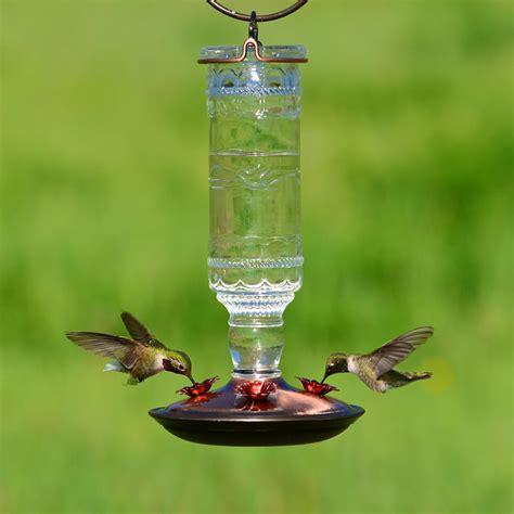 hummingbird feeders amazon com perky pet 8107 2 antique bottle 10 ounce glass hummingbird feeder clear wild