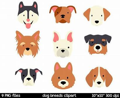 Dog Breed Face Clipart Clip Breeds Puppy