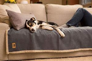 pet throws for sofas refil sofa With dog blankets for furniture