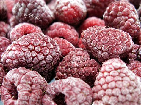 freezing raspberries a beginner s guide to freezing meals and the basics of food storage food for my family