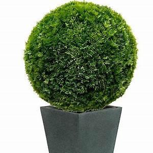 Buchsbaumkugel Künstlich 50cm : ca 50 cm thuja buchbaumkugel k nstlich buchsbaum kugel ~ A.2002-acura-tl-radio.info Haus und Dekorationen