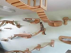 Räume Höher Wirken Lassen : die besten 17 ideen zu katzen kletterwand auf pinterest kratzb ume kletterwand und ~ Bigdaddyawards.com Haus und Dekorationen