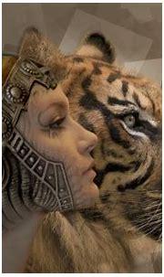 white tiger hd wallpapers 1080p,mammal,vertebrate,snow ...