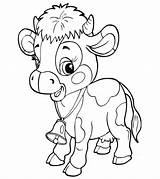 Cow Coloring Printable Little sketch template