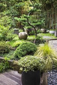 Plante Pour Jardin Japonais : jardin japonais quelles plantes et arbres pour un jardin zen ~ Dode.kayakingforconservation.com Idées de Décoration