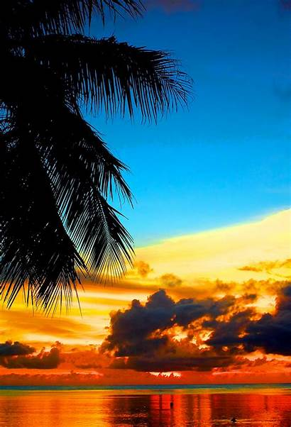 Tropical Sunset Iphone Lovely 3wallpapers Recommended
