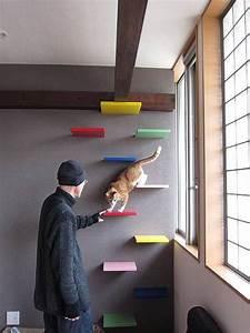 Haustiere Für Die Wohnung : die ideale wohnung f r katzen ich bin sicher das ist ein guter anfang herrschaftlich ~ Frokenaadalensverden.com Haus und Dekorationen