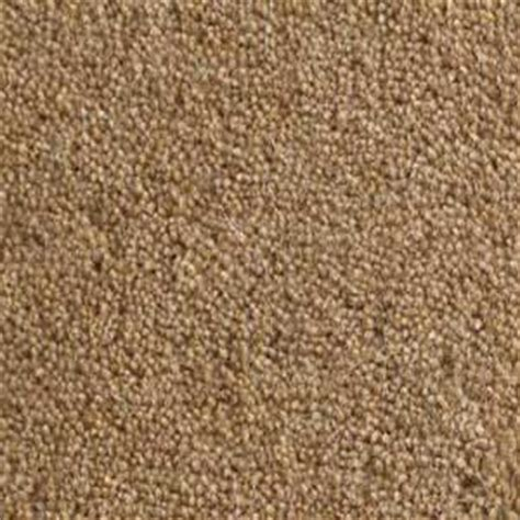 Light Brown Carpet by Buxton Wool Twist Carpet Light Brown Carpets