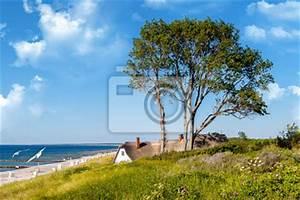 Fototapete Strand Ostsee : fototapete ahrenshoop v2 ostsee d ne ~ Frokenaadalensverden.com Haus und Dekorationen