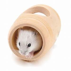 Holzhaus Für Kleintiere : kleintier spielzeuge von toruiwa online kaufen bei futter ~ Lizthompson.info Haus und Dekorationen